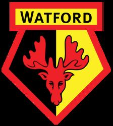 Watford Vs Fulham Fa Premier League 2018 2019